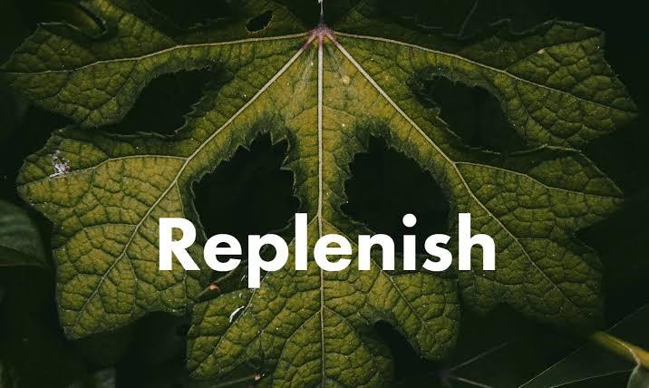 Towards a better future with Replenish Earth