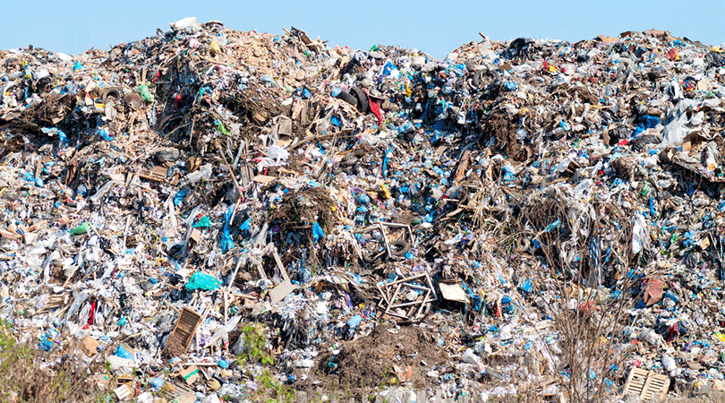 The Alchemy of Bio Degradable Plastic for a Greener World