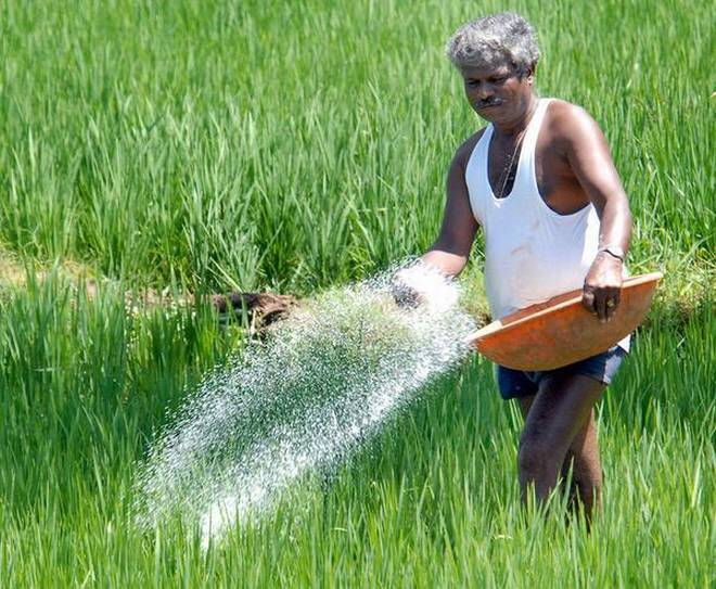 A Light in the Dark Life of Farmers