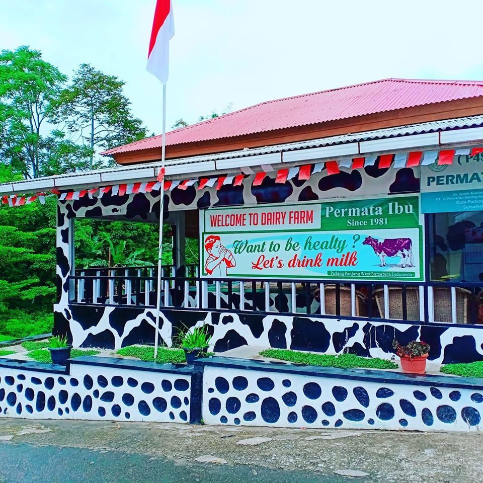 Flourishing Farmer in Padang Panjang, Indonesia