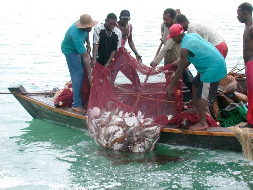 Fighting Destructive Fishing