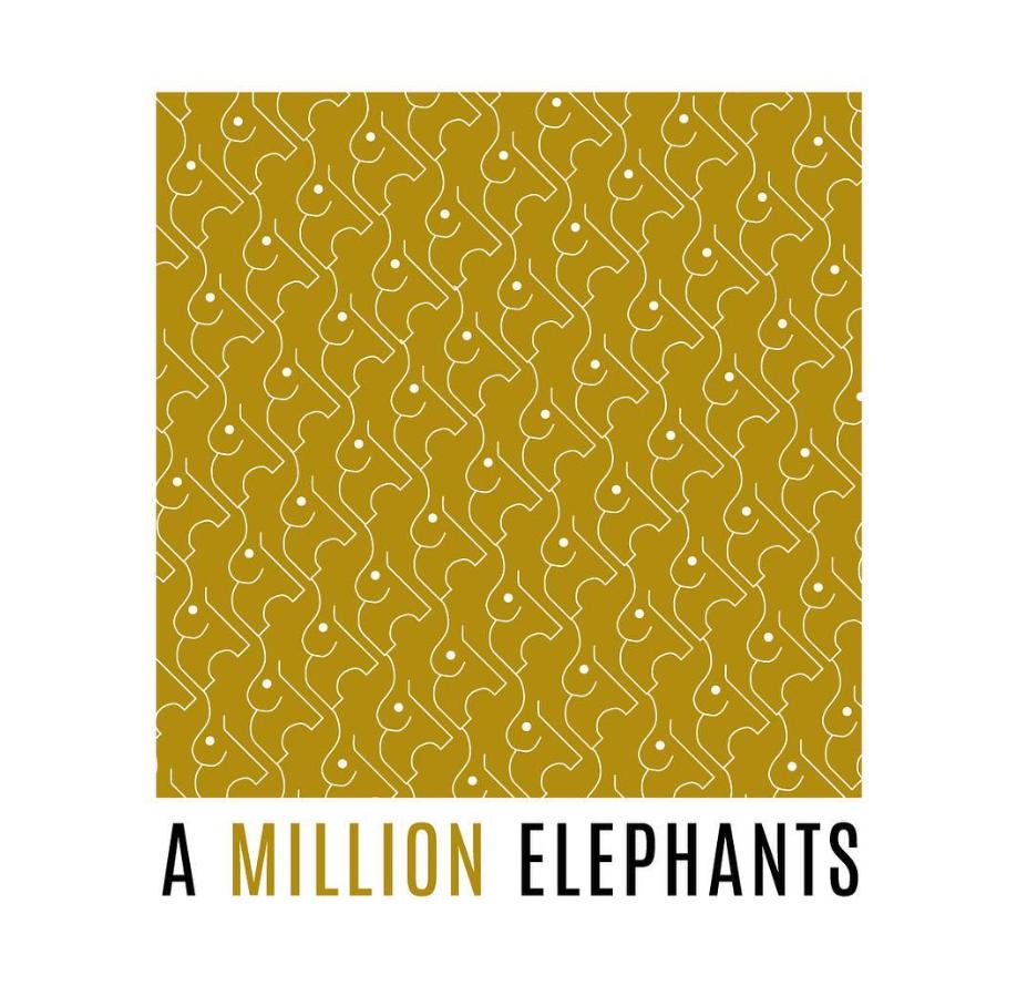 A Million Elephants