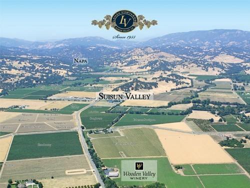 Bringing Innovation to the Amateur Winemaking World