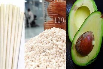 Sustainable Biopolymers Made with Avocado Seed