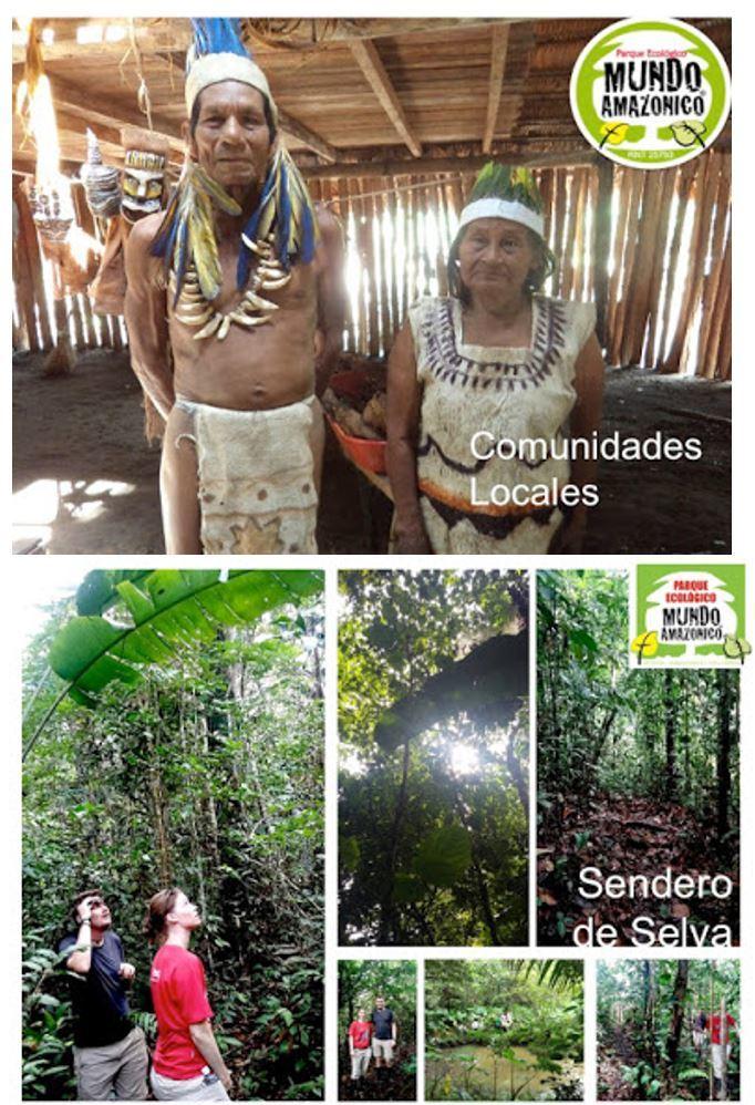 AMAZONAS SOSTENIBLE Y SUSTENTABLE