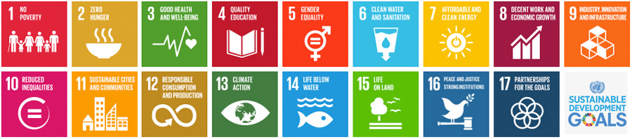 The UN Sustainable Development Goals