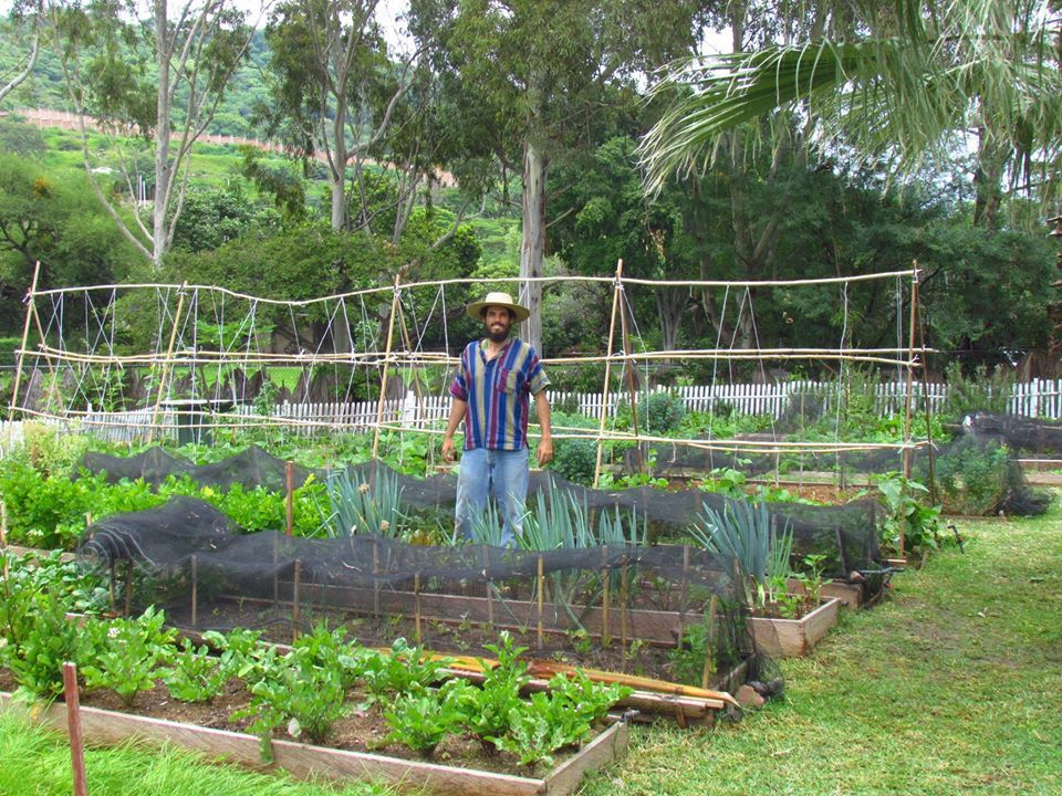 Colectivo Quelite - Permaculture in our Lifestyle!