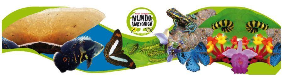 AMAZONAS SOSTENIBLE Y SUSTENTABLE / Sustainable Amazon