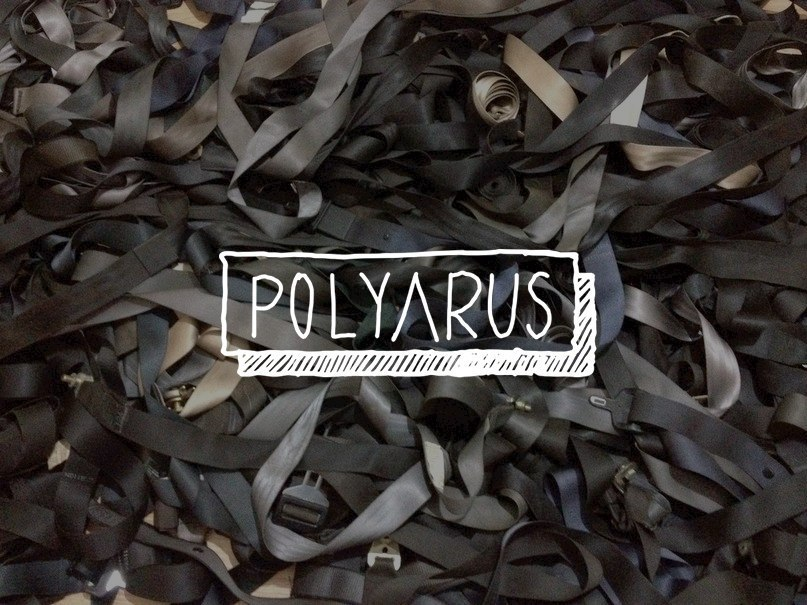 Polyarus