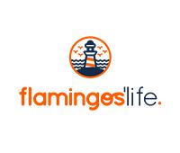 Flamingos' Life