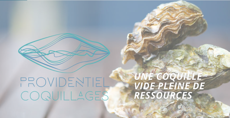 Circular Economy World Is (in) Your Oyster