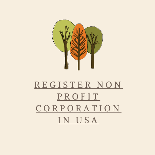 Non-profit Corporation in USA
