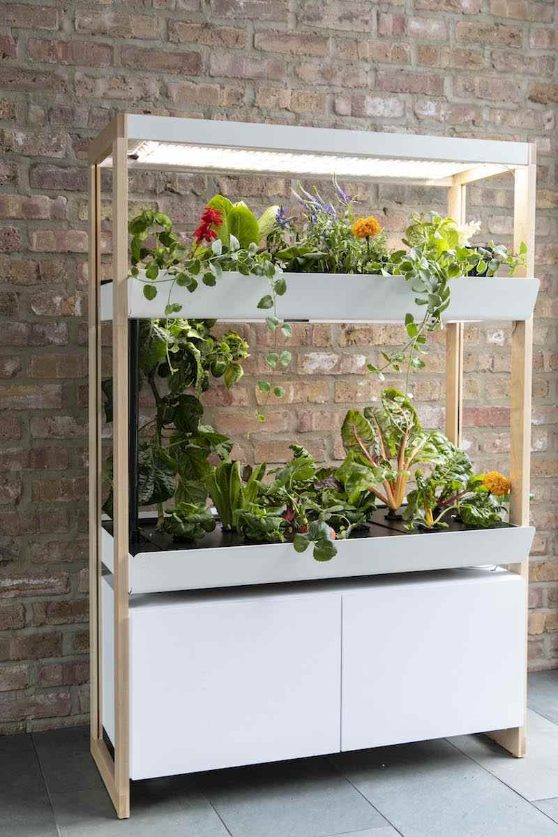 Rising to Food Safety and Sustainability: Rise Gardens Hydroponics Systems