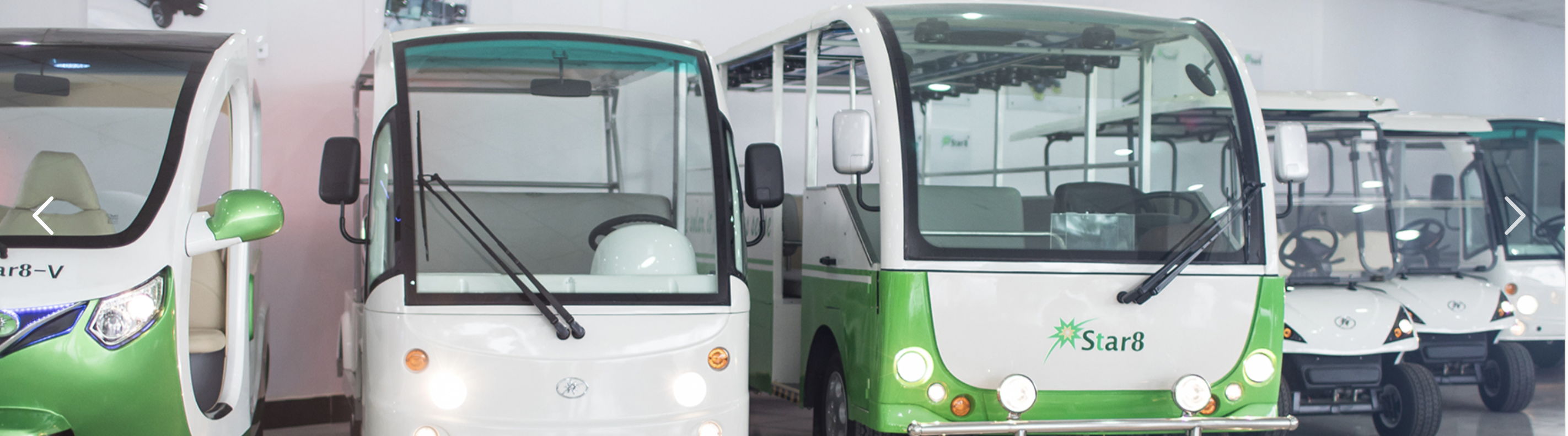 Journey Towards a Greener Transportation
