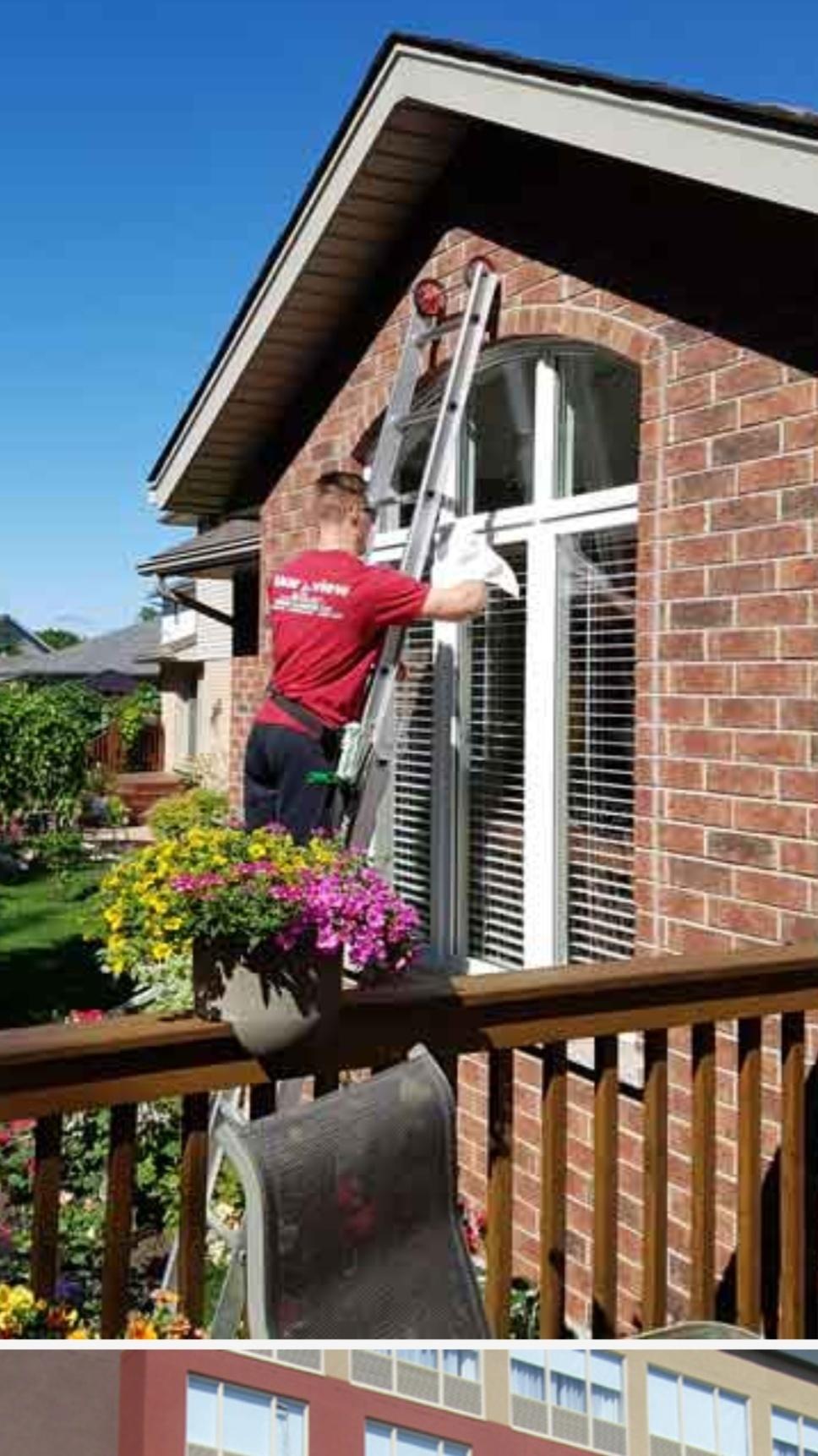 Green Window Washing
