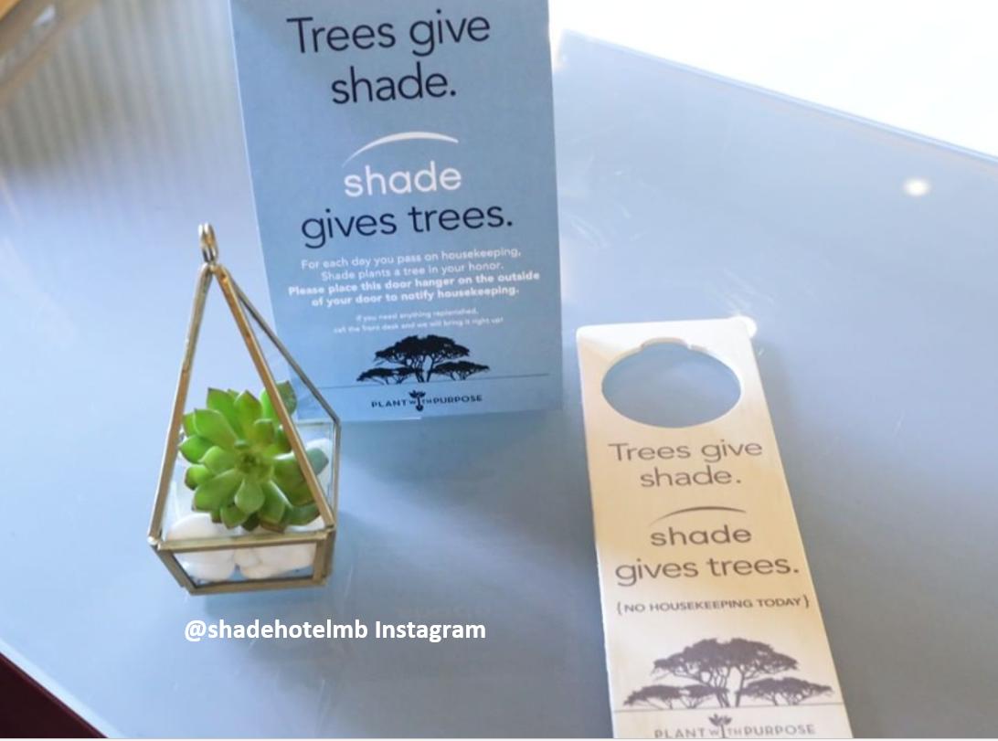 Shade Hotel Helps Provide Shady Trees
