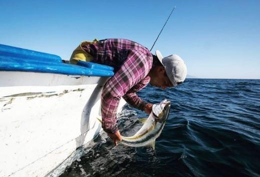 Smartfish Sustainable Fishing