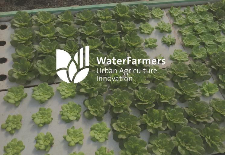 Urban Agricultural Innovation