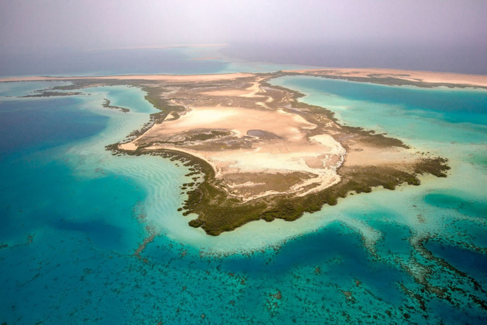 The Red Sea Development Company: On Top of the World
