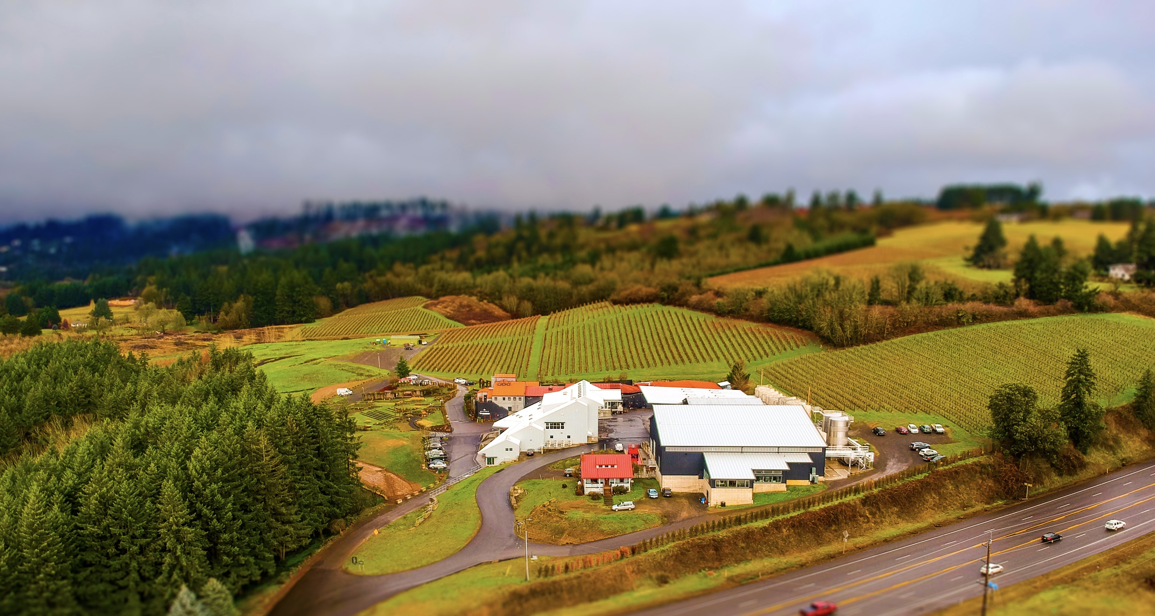 Winery Committed to Employee Opportunity