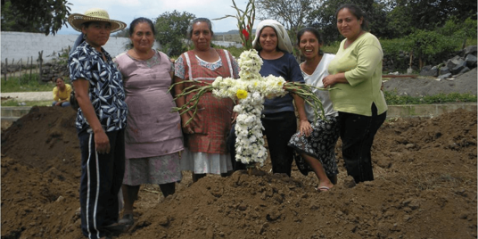 Collaboration Transforms Business in a Mexican Village