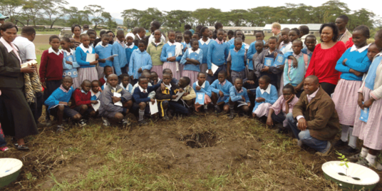 Planting the World: One Waterboxx at a Time