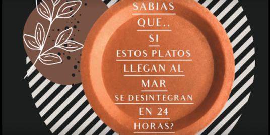 SAVE THE WORLD BITE / SALVA EL MUNDO A MORDISCOS