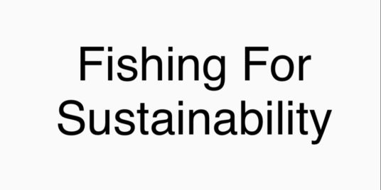 Fishing For Sustainability