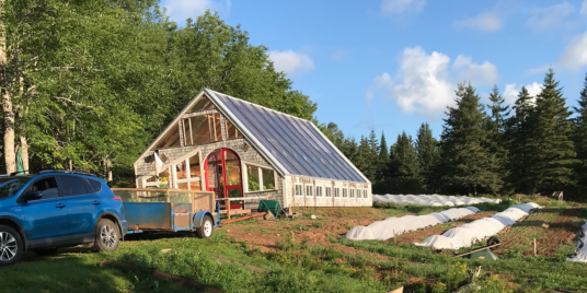 The Wooden Monkey: Sustainable Food Sourcing in Halifax