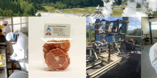 Dehydrating Food with Geothermal Energy for Zero Waste