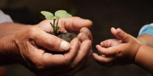 A Regenerative Generation