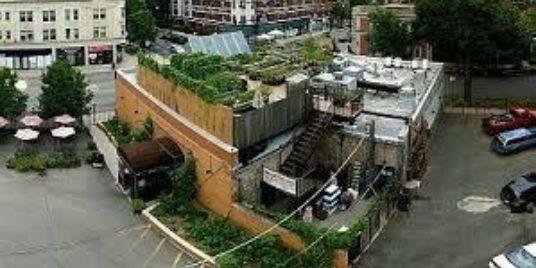 Uncommon Ground: Innovative Chicago Sustainability