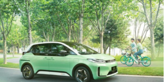 The D1: An Environmentally Friendly Intelligent Ride-Hailing Solution