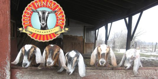 Local Dairy Products for Slow Food Movement