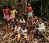 100%Amazônia