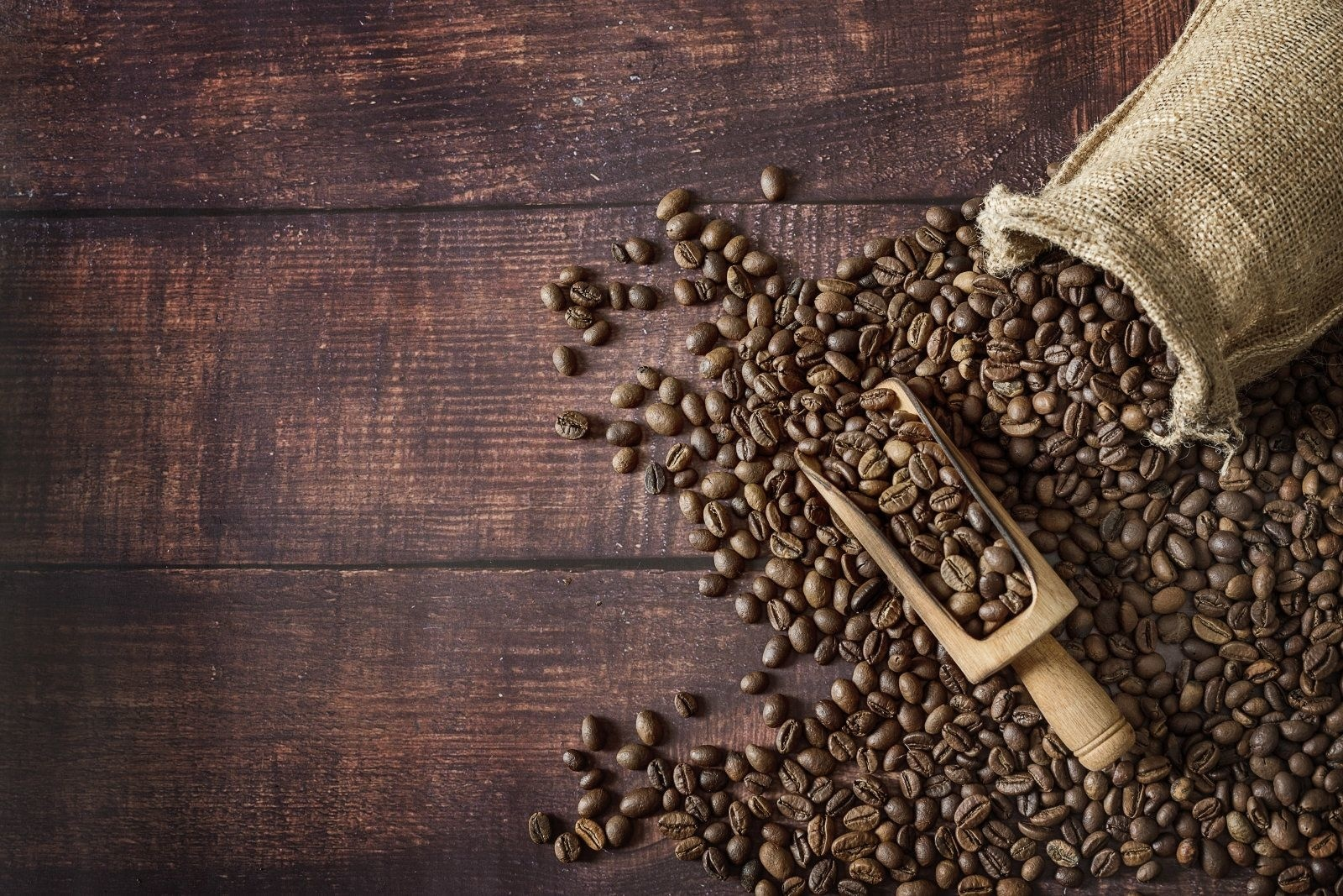 Why It's More Than Just A Bean