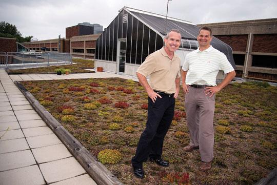 Greener Roofs for a Greener World