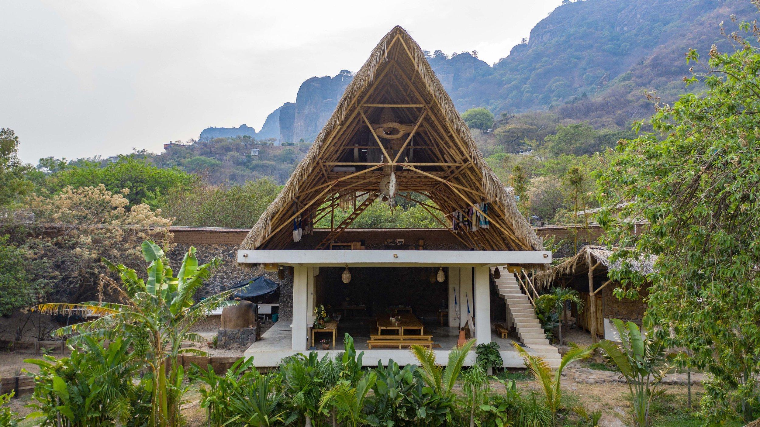 Bamboostruction