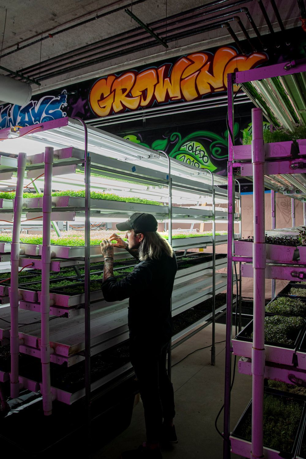 Aquaponic Farming in Downtown Toledo