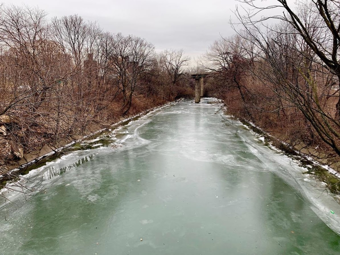 Bringing the Bronx Downstream